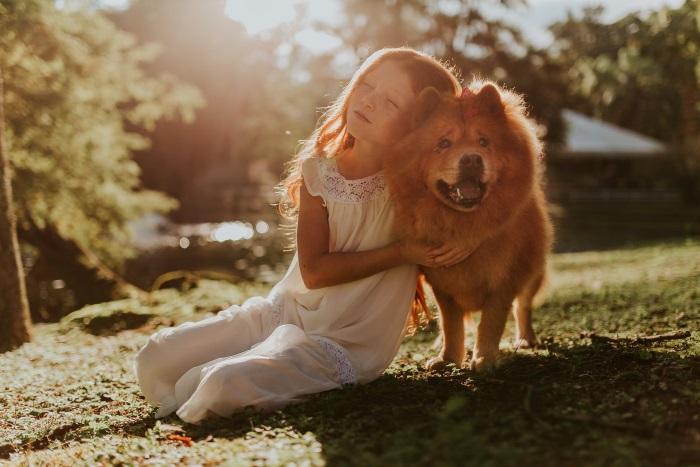 Revisiones periódicas de tus mascotas
