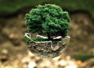 El sistema de ccalidad medioambiental de CRM Synergies un modelo en el sector industrial