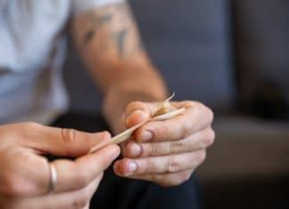 Cuáles son los conos de papel para fumar de Smoking
